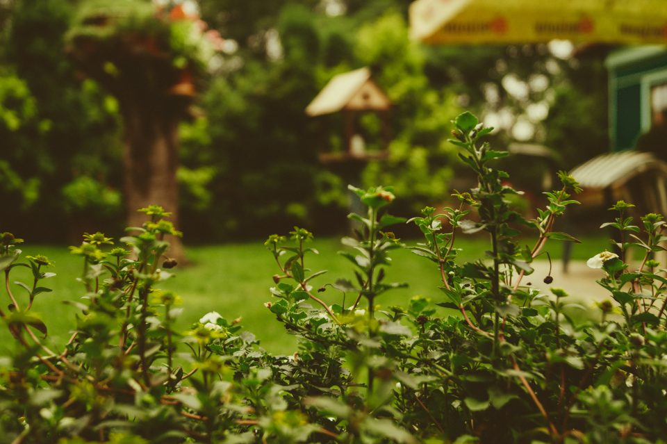10 Reasons To Landscape The Garden