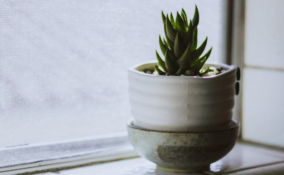Boost Your Serene Living Space With These Tips